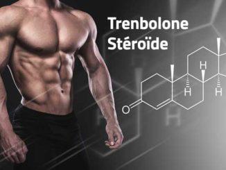 Trenbolone Stéroïde
